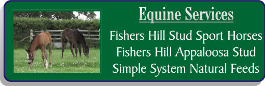 Equine Services from Mill Farm Ashorne