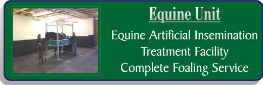 Equine Unit at Mill Farm Ashorne